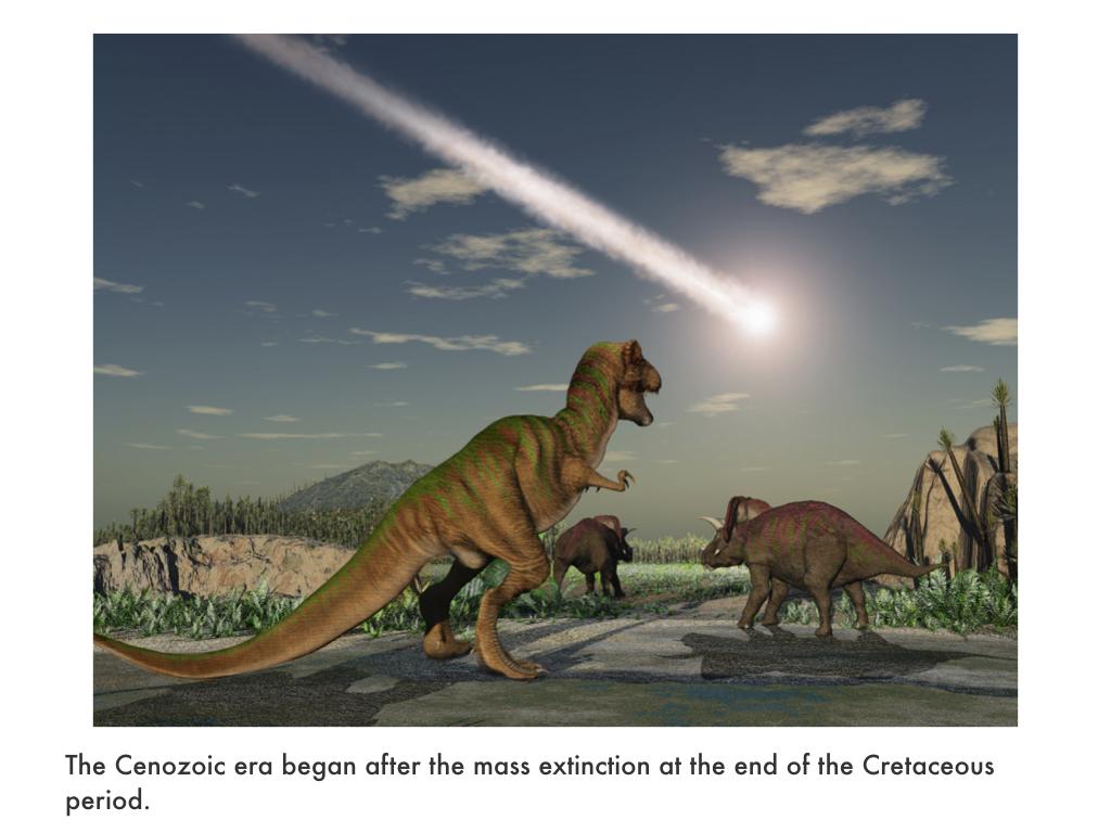 Cenozoic Era.018.jpeg