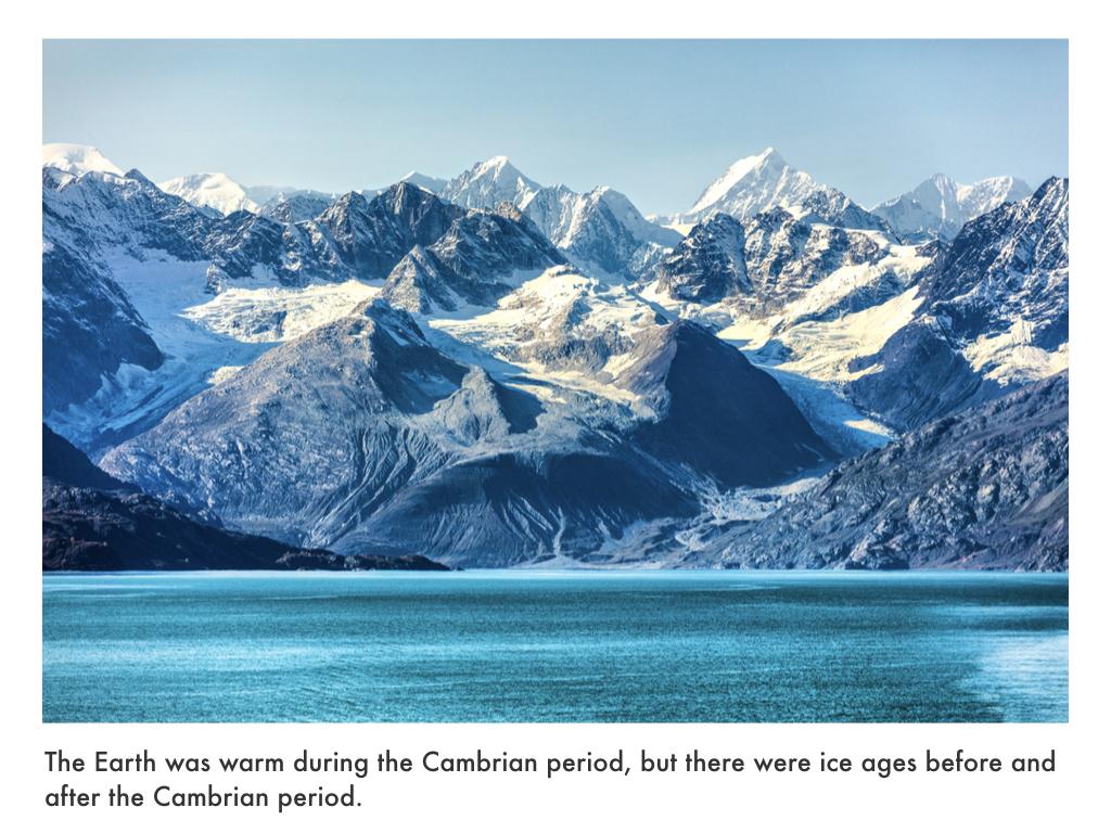 Cambrian Period.020.jpeg