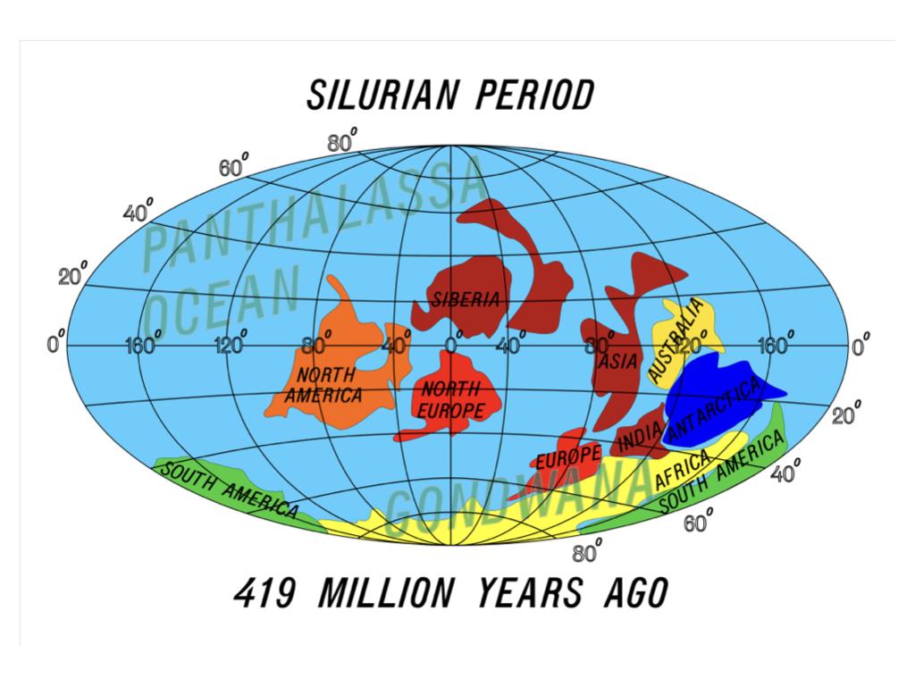 Silurian Period.023.jpeg
