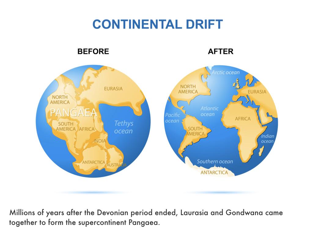Devonian Period.022.jpeg