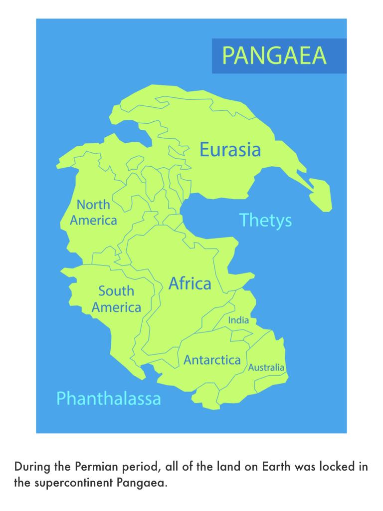 Triassic Period.016.jpeg