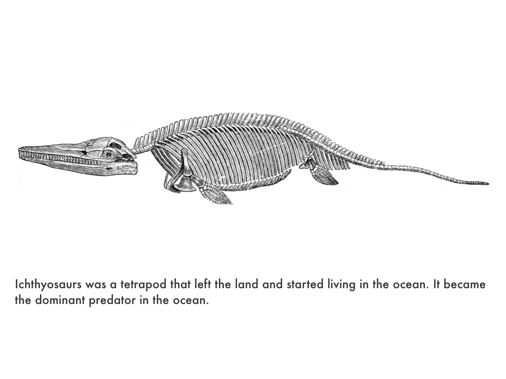 Triassic Period.020.jpeg