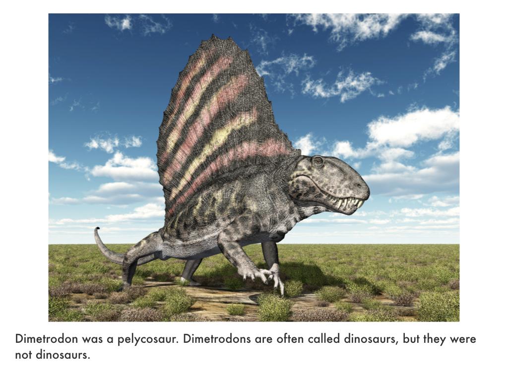 Triassic Period.021.jpeg