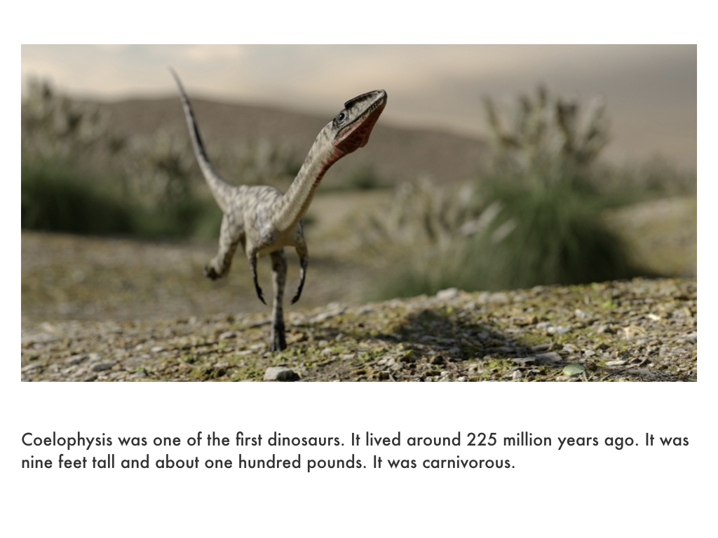Triassic Period.030.jpeg