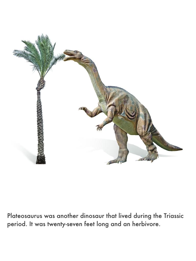 Triassic Period.031.jpeg