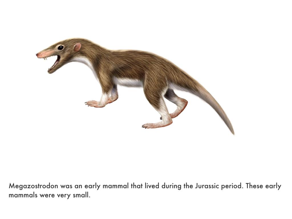 Jurassic Period.030.jpeg