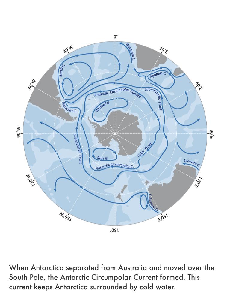 Paleogene Period.023.jpeg