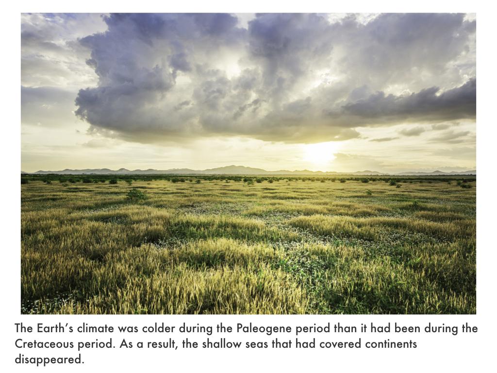 Paleogene Period.024.jpeg