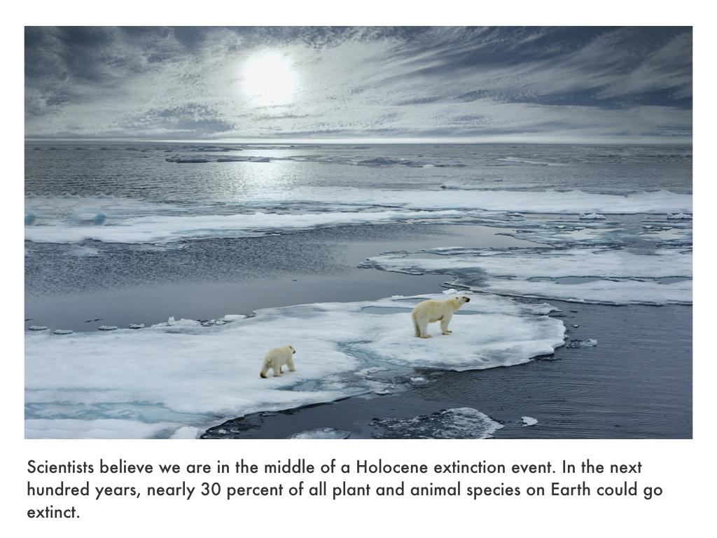 Quaternary Period.035.jpeg