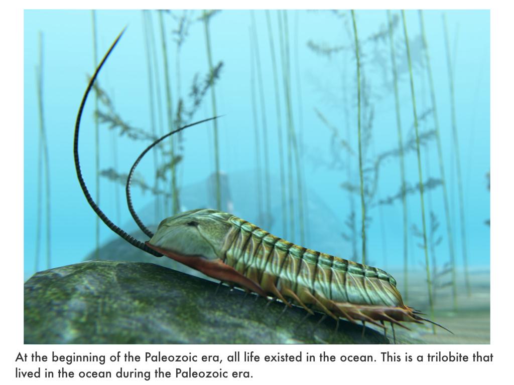 Paleozoic Era.021.jpeg