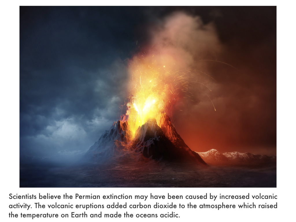 Paleozoic Era.042.jpeg