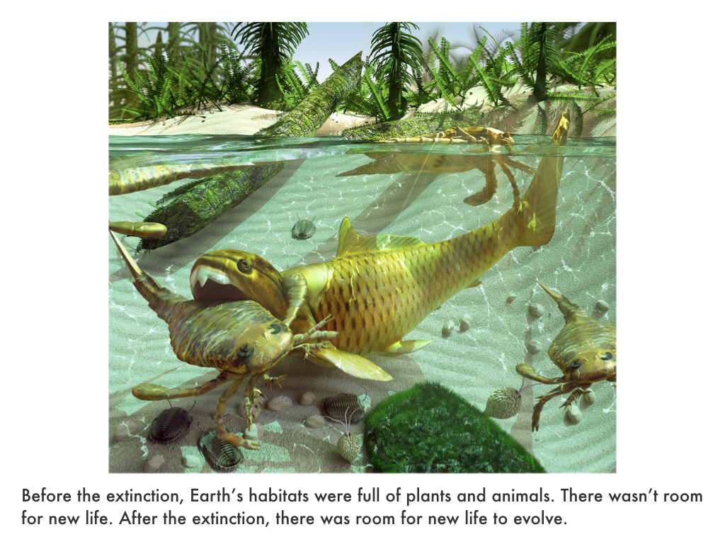 Paleozoic Era.044.jpeg
