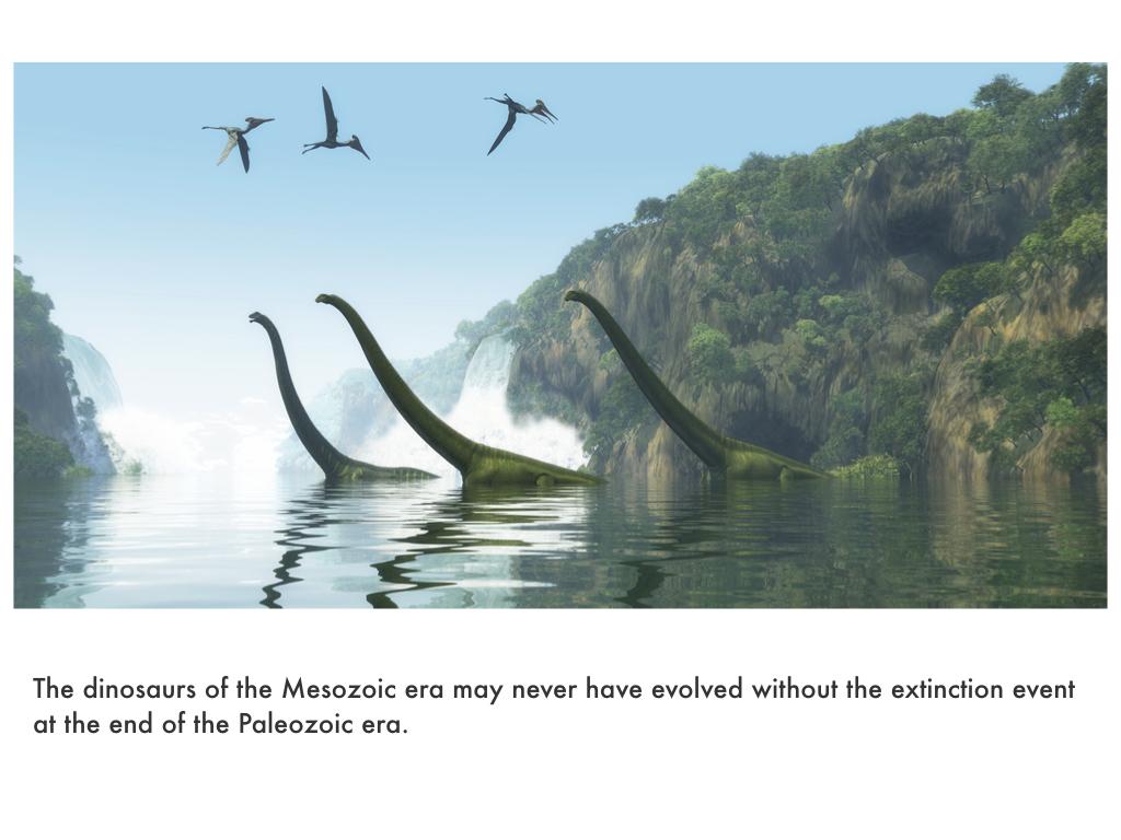 Paleozoic Era.045.jpeg