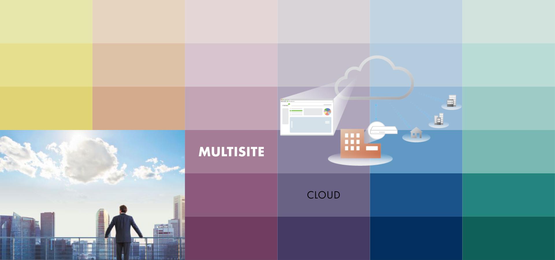 promelit - multisite cloud.png
