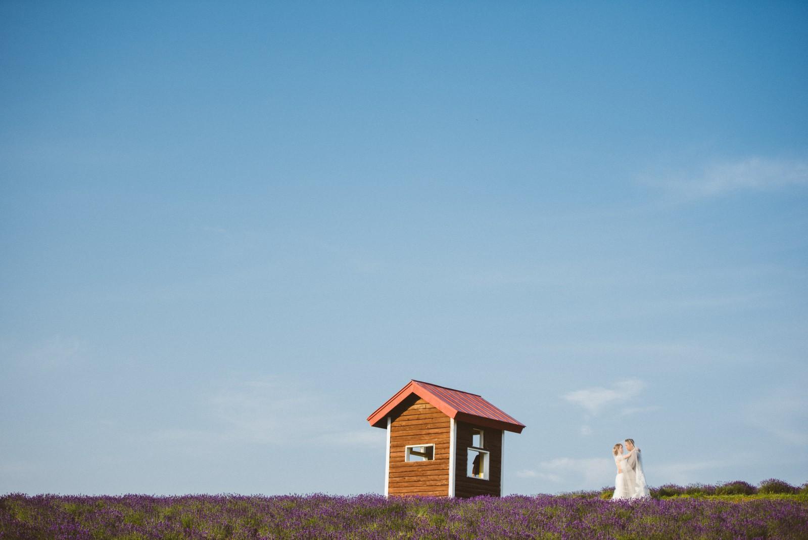 北海道薰衣草婚紗推薦工作室,海外婚紗