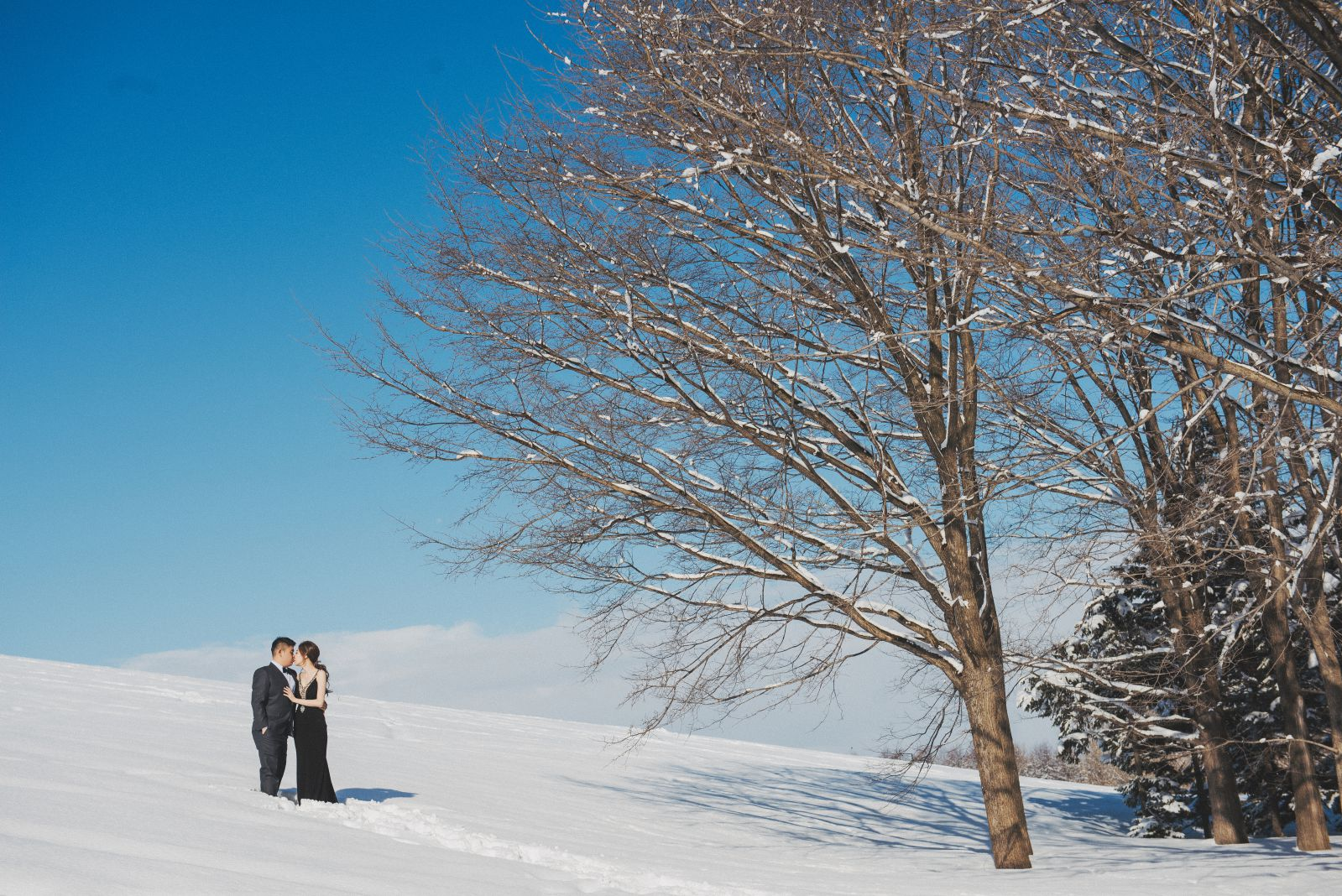 雪地婚紗,北海道冬季婚紗2019