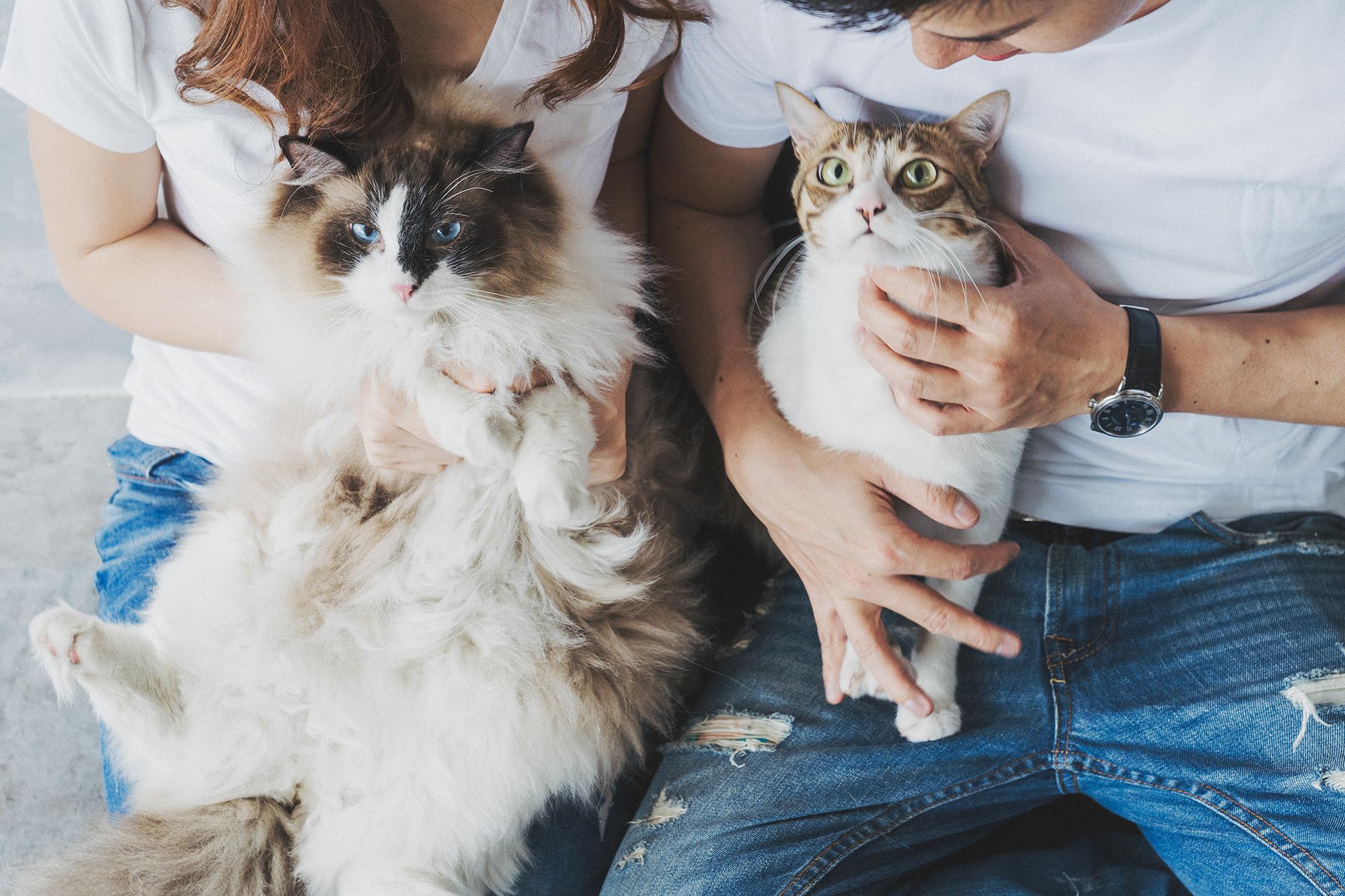 寵物寫真,兒童寫真,寵物全家福,全家福,寵物棚拍,貓咪寫真