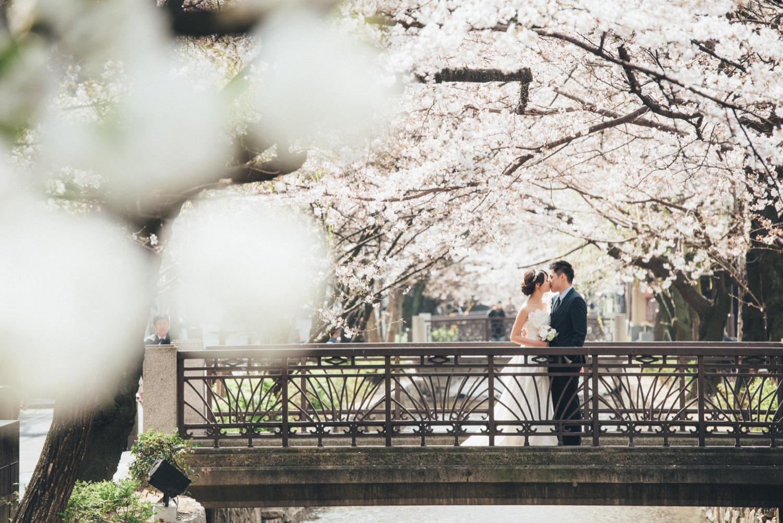 京都婚紗攝影,京都櫻花攝影