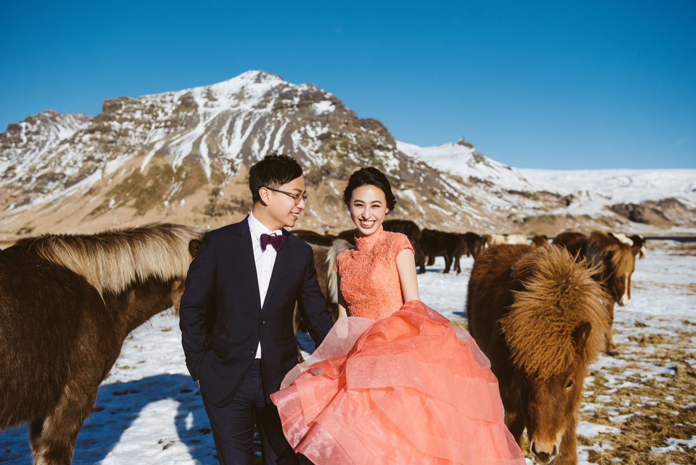 冰島馬,冰島旅遊婚紗