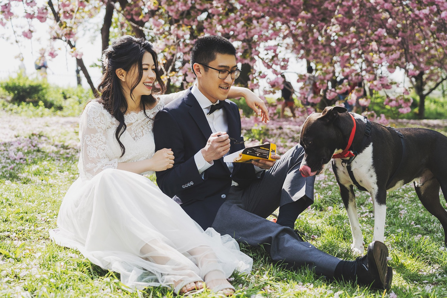 紐約櫻花婚紗,紐約海外婚紗,engagement photo,purefoto