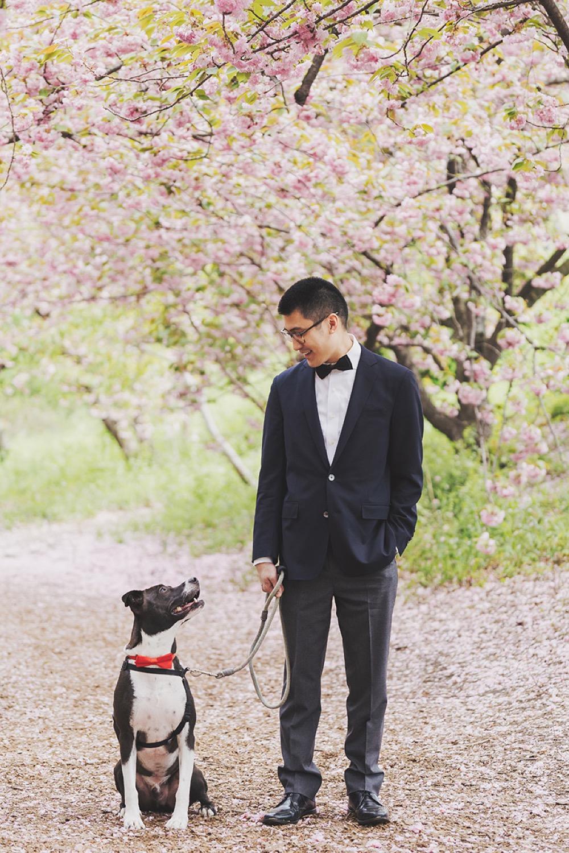 男人與狗的畫面很可愛啊!