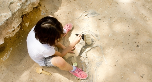 Uncovering_Fossils