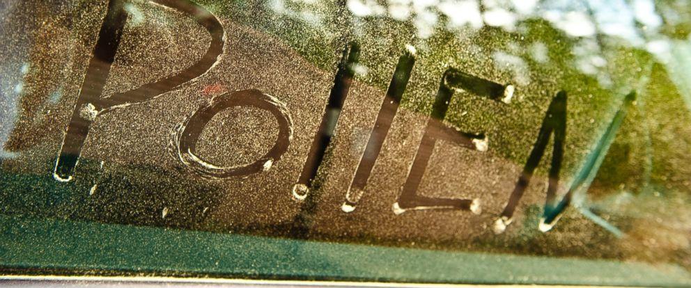 gty_pollen_car_window_jc_150408_12x5_992.jpg