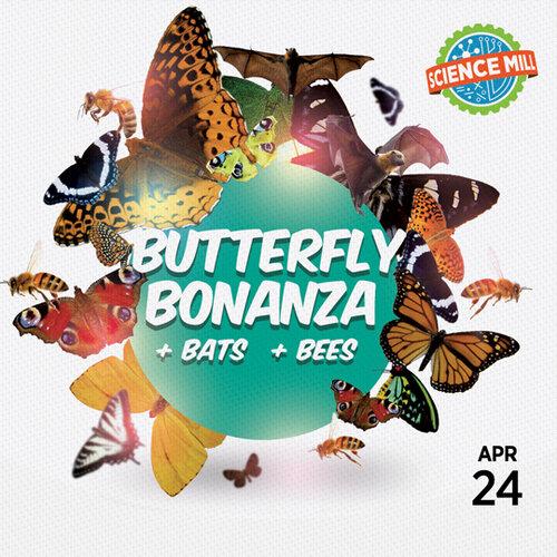 Butterfly Bonanza (+ Bats & Bees)