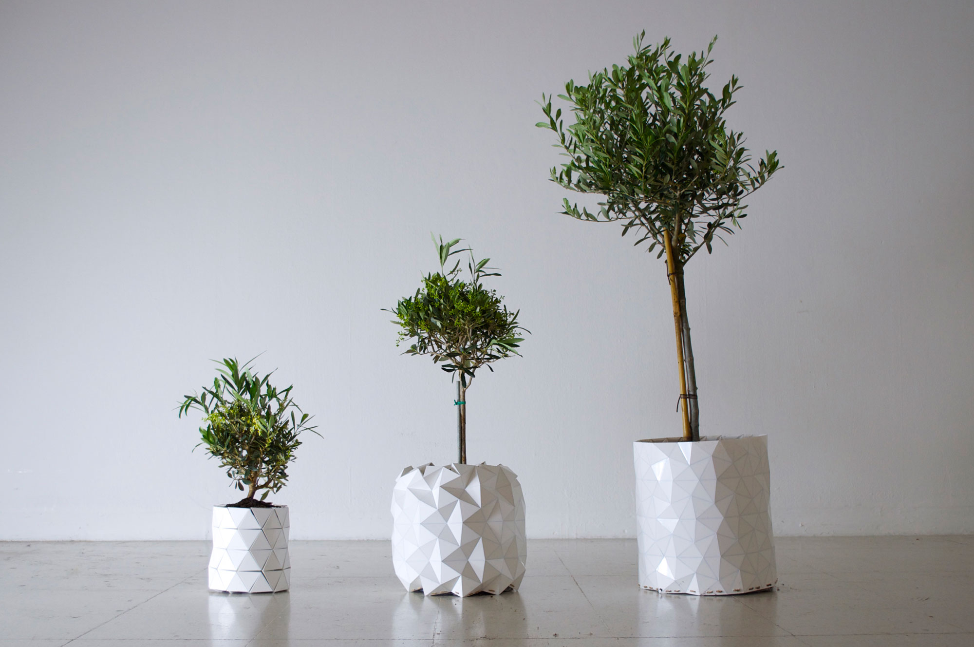 Studio-Ayaskan-Growth-Origami-Planter6.jpg