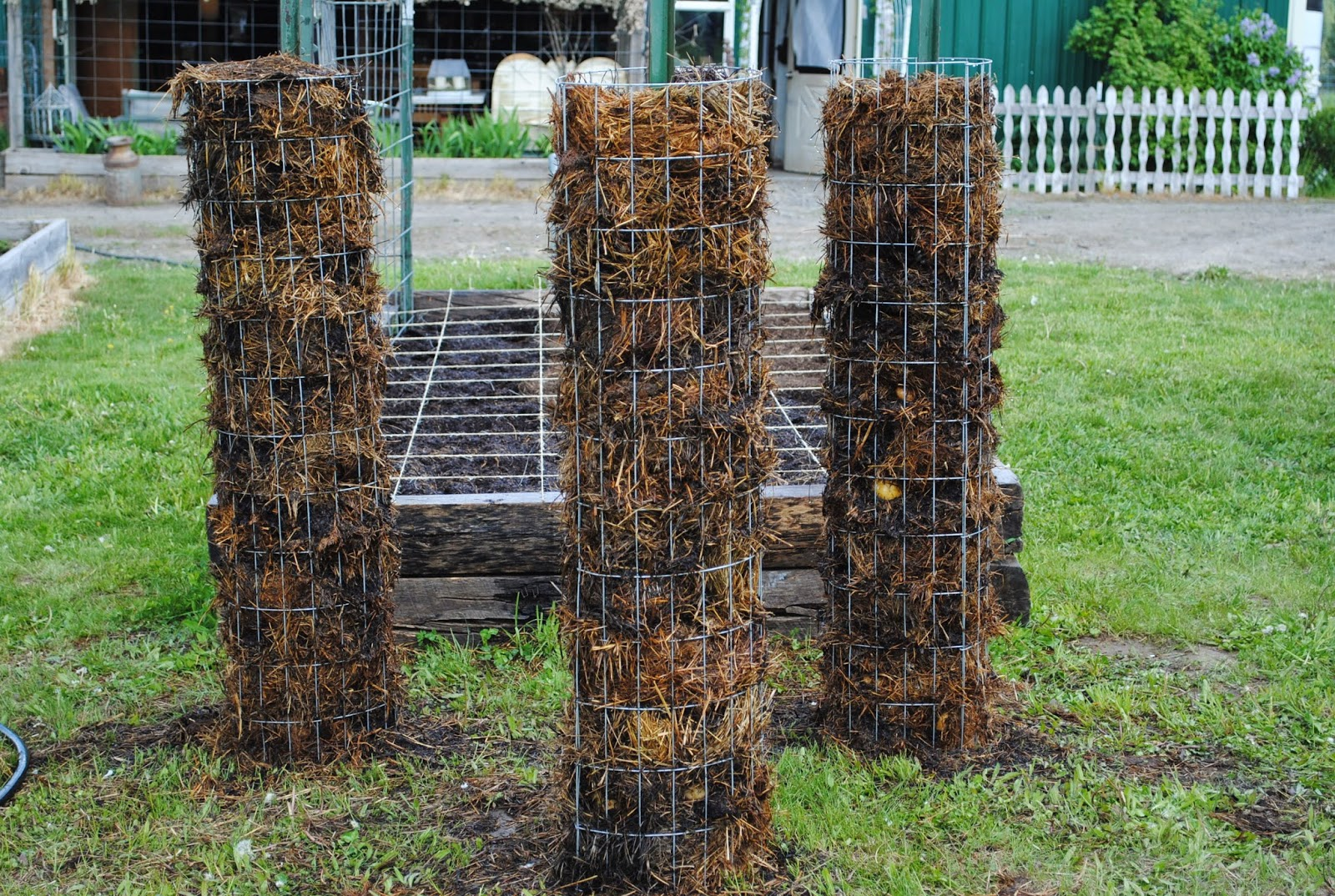 Freshly installed potato towers
