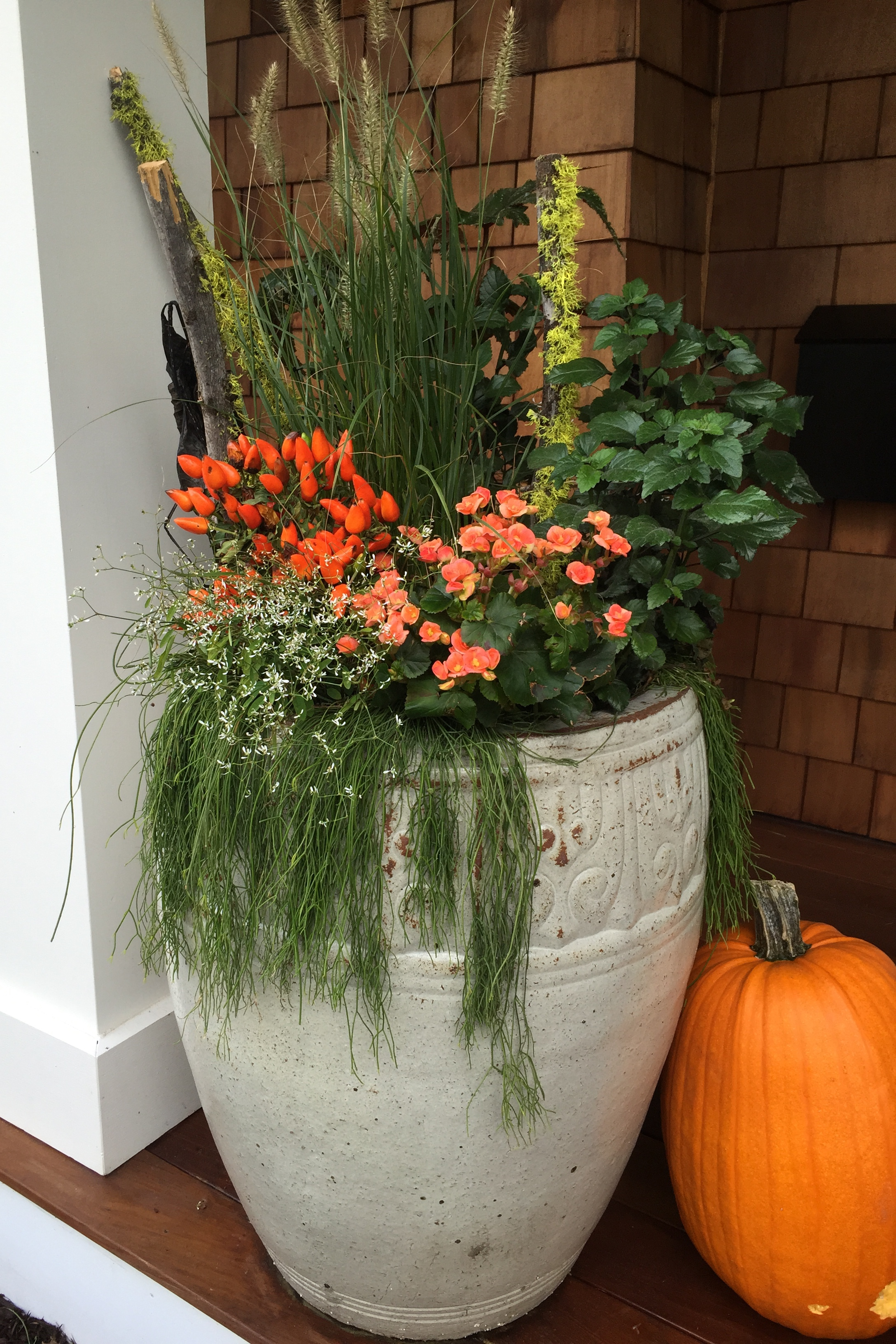 FALL CONTAINERS.JPG