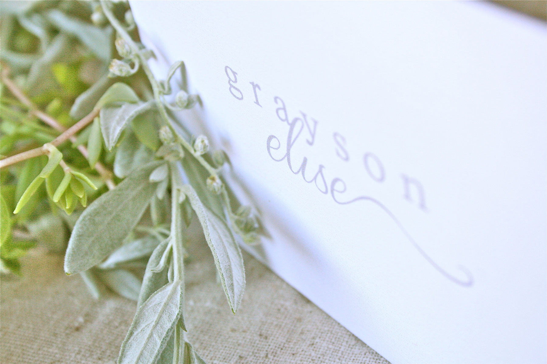 photography logo design & marketing | bittersweet design boutique