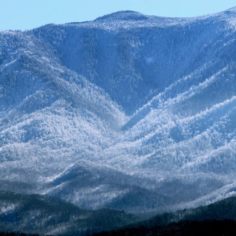 Mt. leconte_winter.jpg