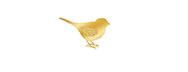 birdphotopages2.jpg