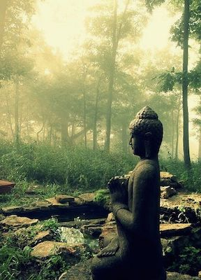 Tai Chi and Stress Management