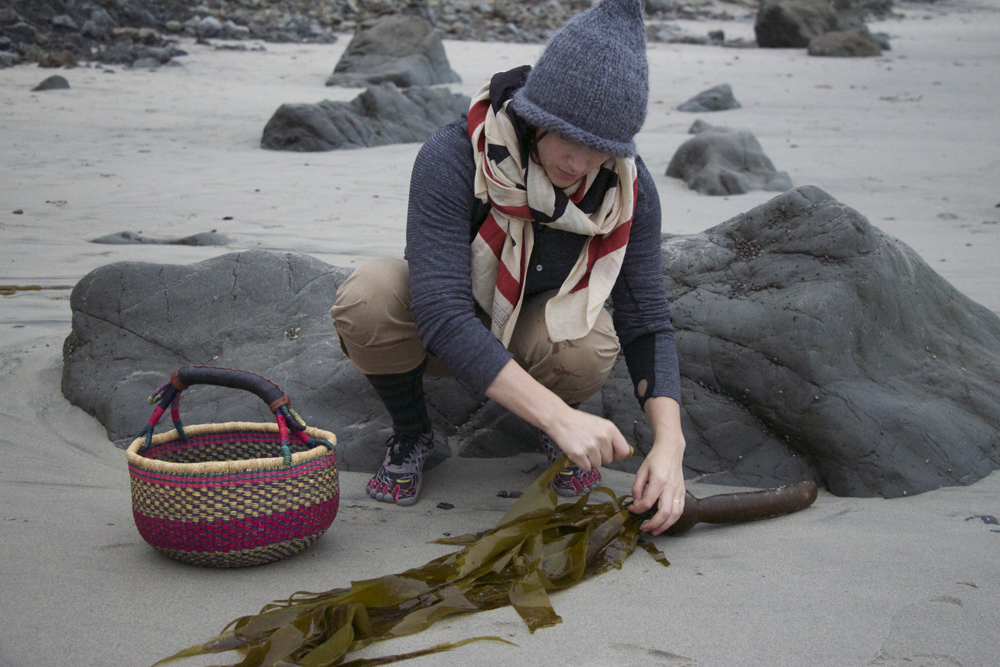 seaweedgathering1.jpg