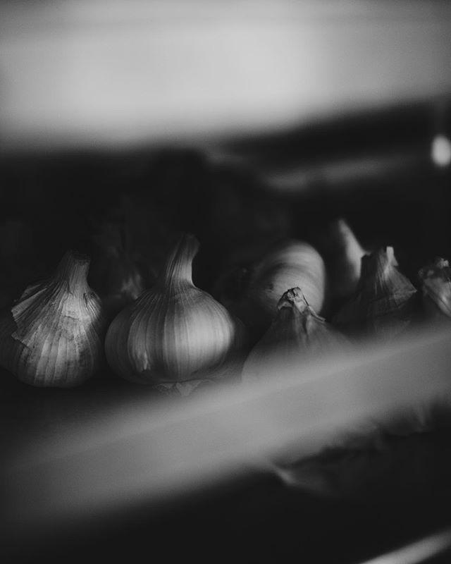 Garlic Detail at #SquareRootNOLA