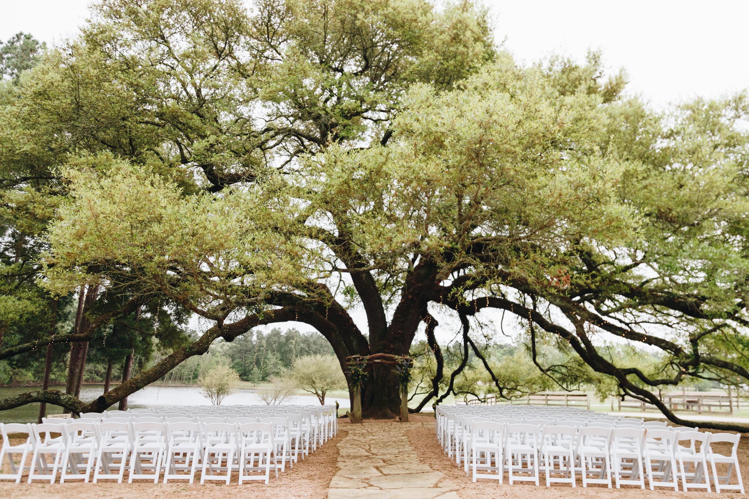 Pine Lake Ranch Wedding-1.jpg