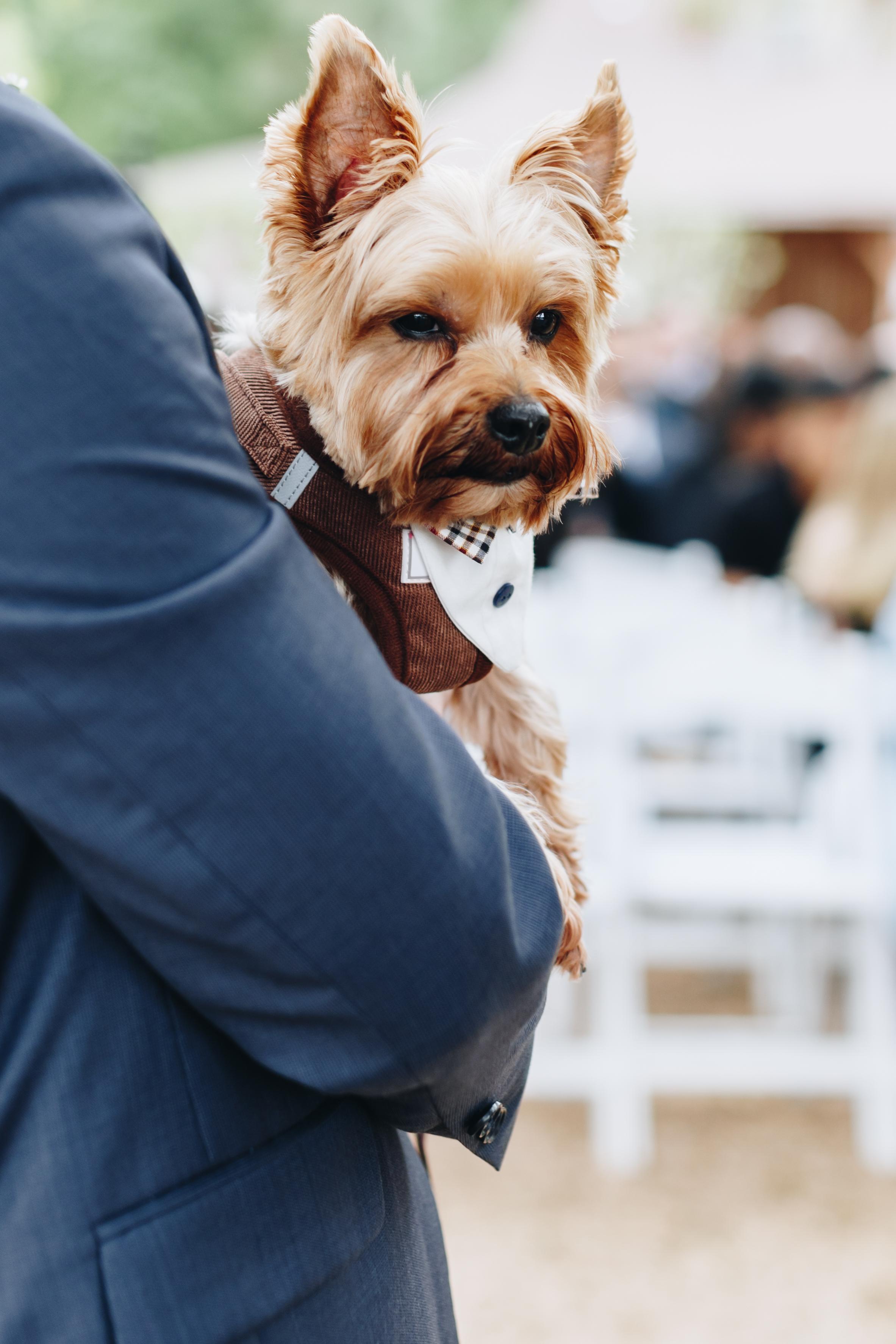 Pine Lake Ranch Wedding-47.jpg