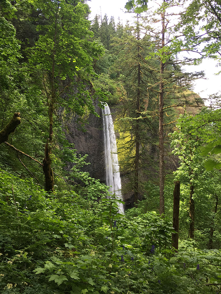 latourell-falls-oregon-hike-waterfall-19.JPG