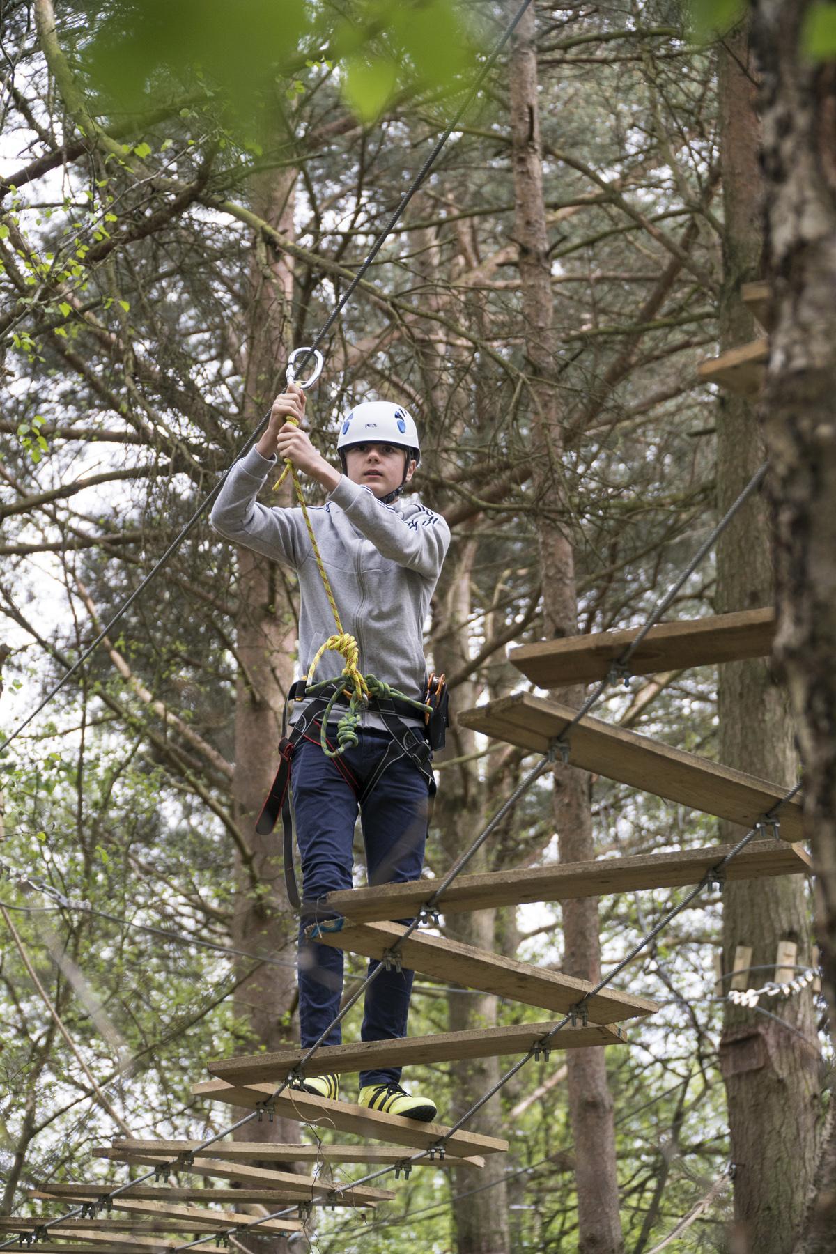 wild-pines-full-size-21.jpg