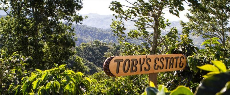 [www.tobysestate.com.au]