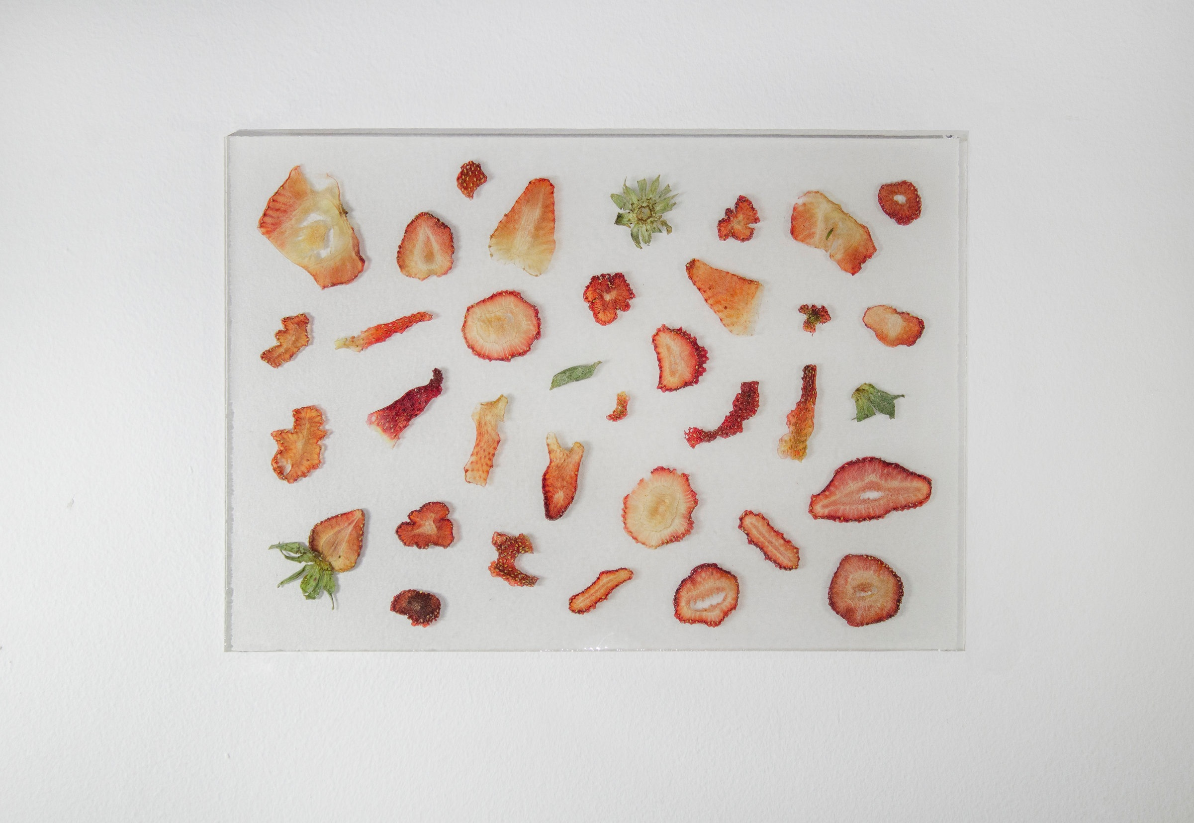 Strawberry Slices Encased in Resin From the H&R Block Artspace 2018 KC Flatfile + Digitalfile Exhibition