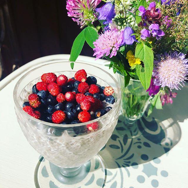Tänane hommikusöök rõdul . . #hingelepaiajakiri #hommikusöök #breakfast #headisu #suvi #metsaannid #magustoit #magus