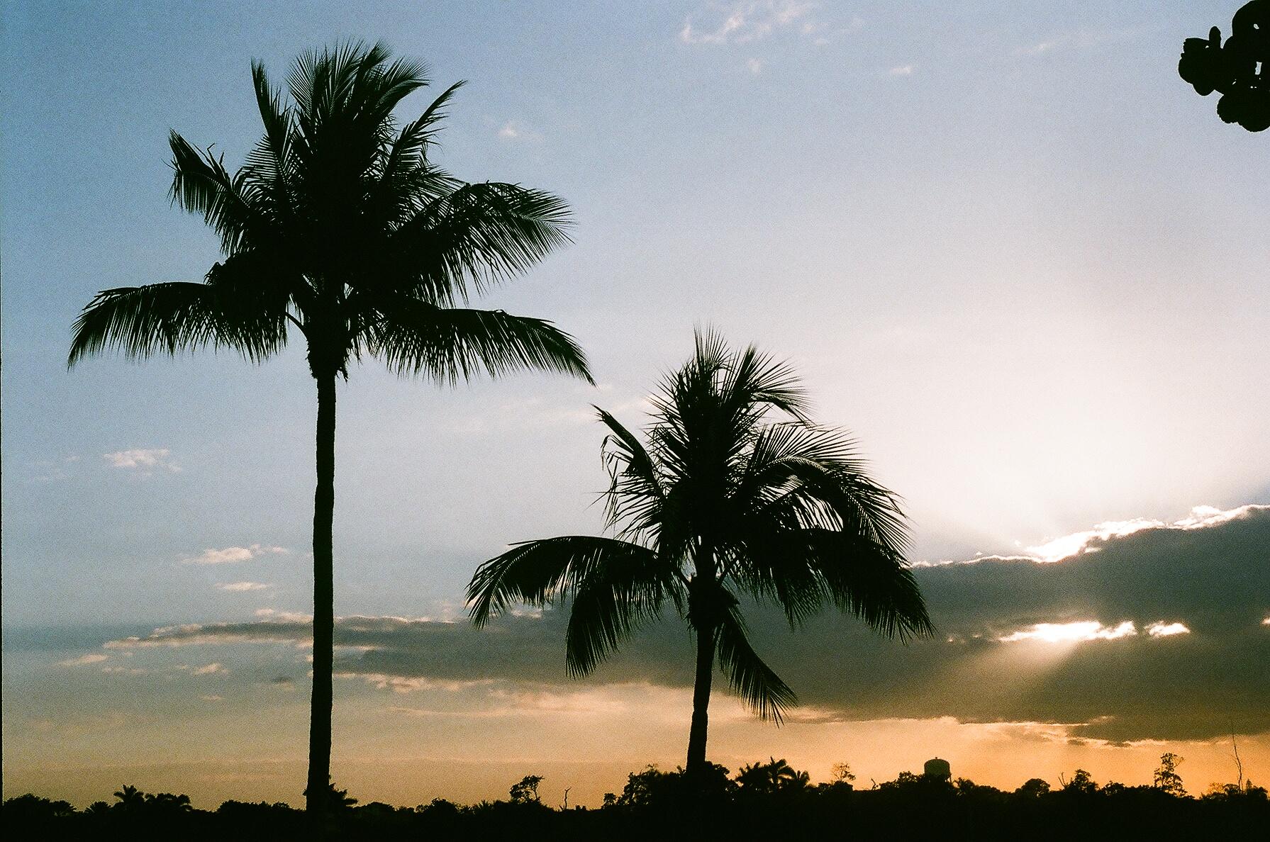 Sunset in Boca Raton, FL. Spring 2016. (Agfa Vista Plus 200)