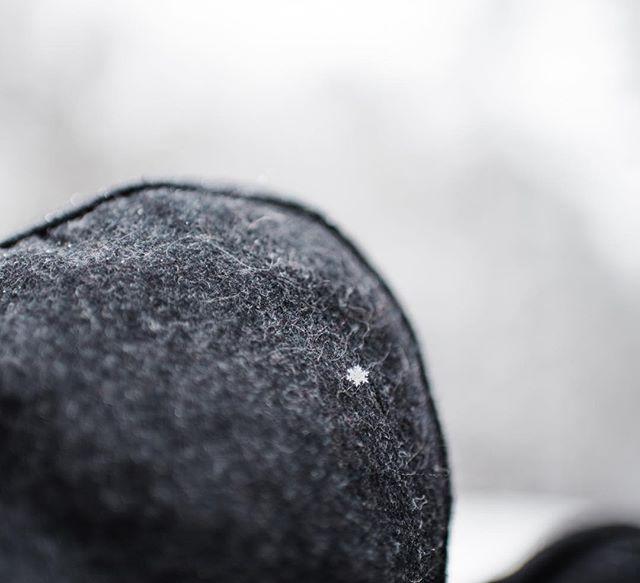 ❄️ Snow ❄️ . . . . . . #doverde #doverphotgrapher #doverafb #doverairforcebase #delewarephotographer #dephotographer #lifestylephotographer #childphotography #portraitphotographer #familyphotographer  #farahreneephotography #justgoshoot #peoplescreatives #visualsoflife #familyphotography #goldenlight #darlingmovement #dearphotographer #lookslikefilm #snowflake #snow #pixel.kids