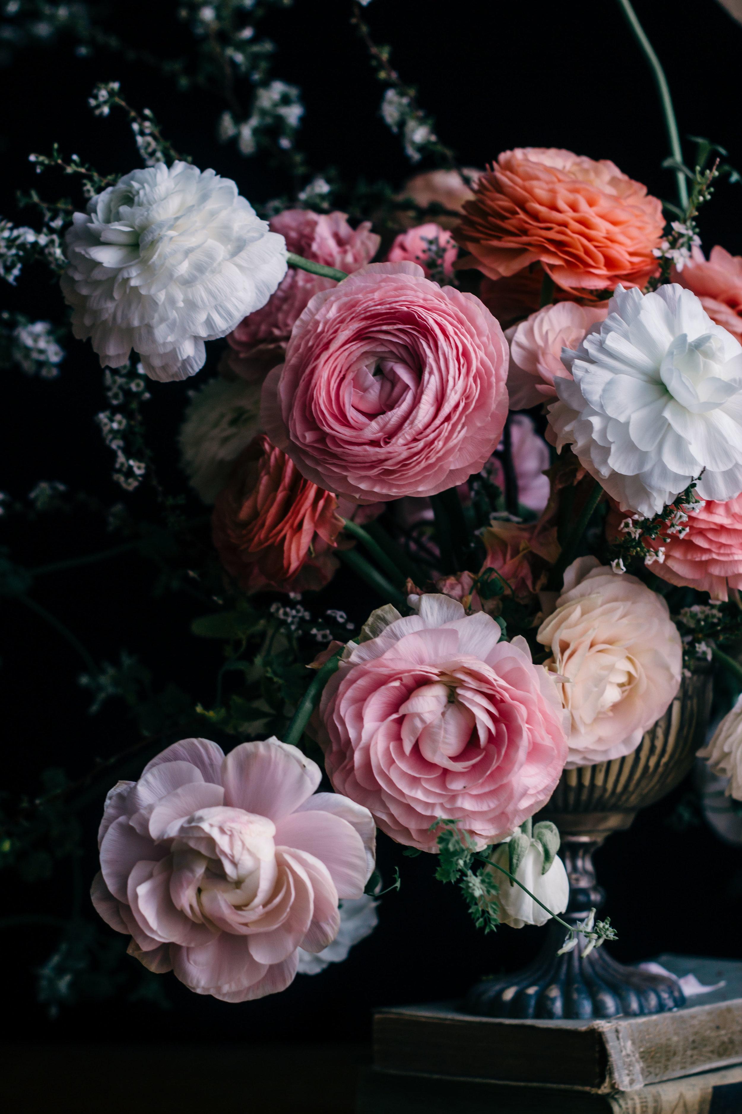 stilllife815 flowers fleurs (4 of 1).jpg