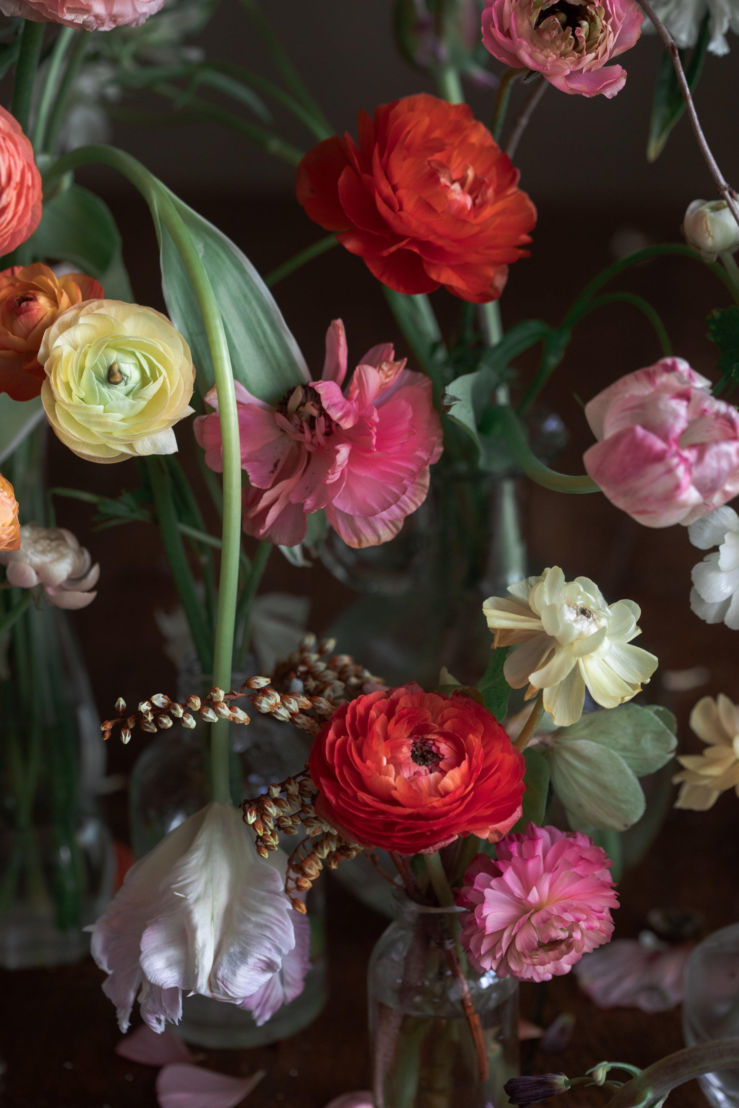 3312 fleurs (1 of 1).jpg
