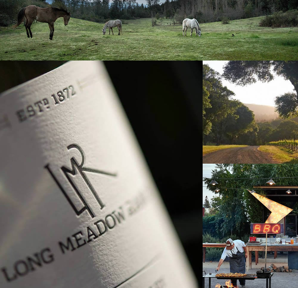 THE ANDERSON VALLEY ESTATE  69 ACRES 2.5 HOURS NORTH OF SAN FRANCISCO IS WHERE STÉPHANE VIVIER IS THE WINEMAKER