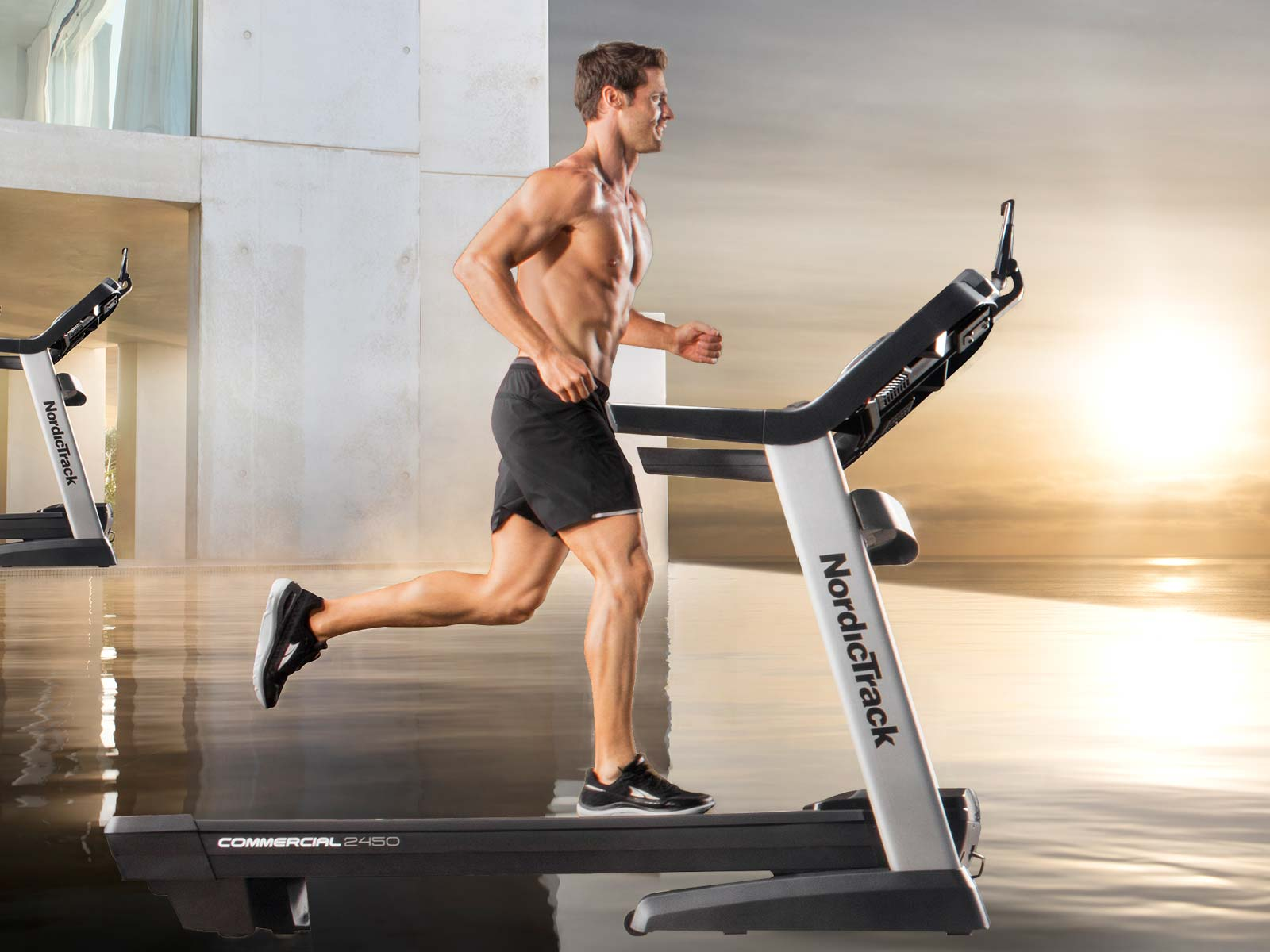 Commercial 2450  Treadmill review by maybe.yes.no